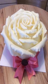 WCK01-White Rose Cake
