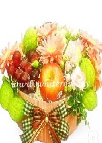 WFF08-Fruits Garden