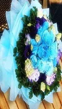 WH01-Blue Dream