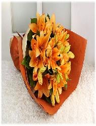 WRI06-Orange Lily