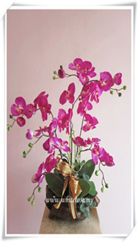 WRA02-Beautiful Lady (Artificial Orchid)