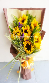 WRS03-Sunshine Blooming